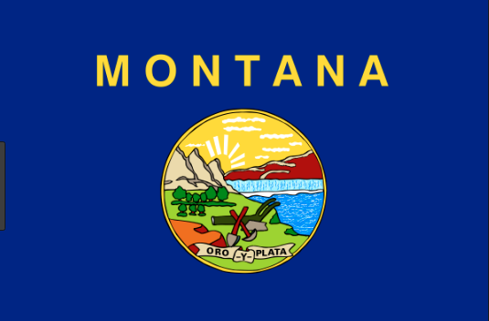 Montana's Progress on Clean Energy Interconnection. What's missing and what's next?