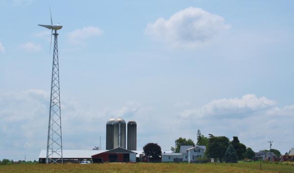 Richmond-Farms-Dairy