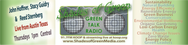 Podcast: Austin Voices in Renewable Energy for International Women's Month